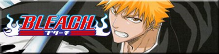 http://massivegearsmedia.files.wordpress.com/2011/01/bleach-banner-1.jpg